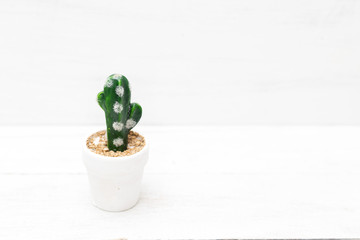 Cactus in a flowerpot on a white wooden table. Mock up