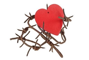 Red heart on barbed wire, white background