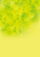 クローバー ふわ 縦 黄緑