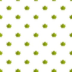 Maple leaf pattern seamless in flat style for any design