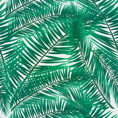 Pattern of colorful tropical plants leaves on white background. Greeting cards, wallpapers, flyers and banners jungle concept. Colorful realistic style. Vector illustration. EPS 10.