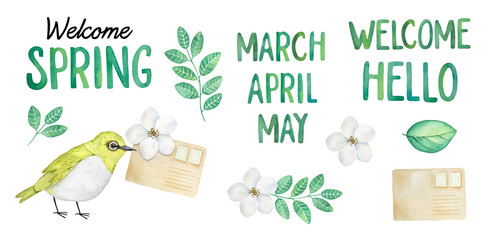 Springtime water color collection. Hand drawn letters, phrases and month names, white blooming flowers, grass greenery, paper envelope with stamps. Decorative isolated elements on white background.