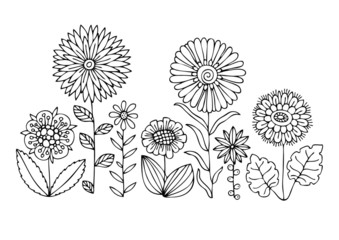 Hand drawn flowers. Sketch for anti-stress adult coloring book in zen-tangle style. Vector illustration for coloring page, isolated on white background.