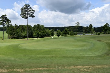 Golf course fairway landscape