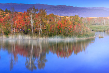 Colorful trees reflecting in tranquil lake  in the morning.