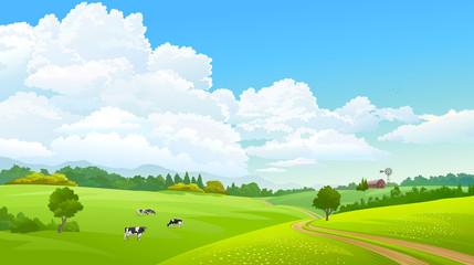 Foto auf Acrylglas Lime grun Farm caws grazing green grass