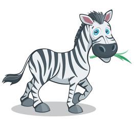 Funny Cartoon Style Zebra Big Eyes Vector Illustration Isolated on White