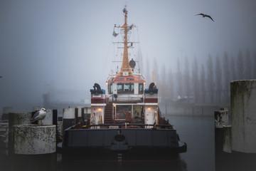 Schiff im Hafen von Kiel bei Nebel