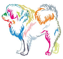 Colorful decorative standing portrait of Tibetan Mastiff