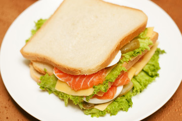 Sandwich with salmon. Sandwich with red fish.Sandwich isolated white background.