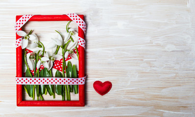 Snowdrop flowers in a red photo frame