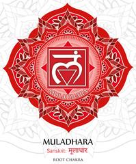 Vector of Muladhara chakra