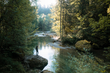 Calm forest with river and female hiker standing on a stone overlooking the water in Germany