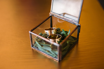 Wedding rings in a glass box on a moss. on a wooden surface