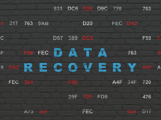 Information concept: Painted blue text Data Recovery on Black Brick wall background with Hexadecimal Code