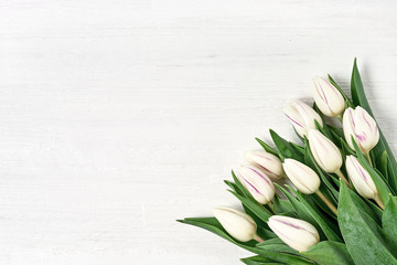 White tulips bouquet on white wooden background. Copy space, top view