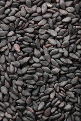 textured background of dark sesame