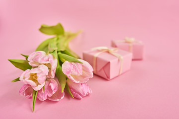 Valentines day background with pink tulips and gift box over pink background. Space for text