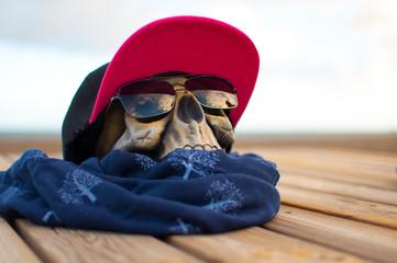 Calavera con gafas de sol en verano