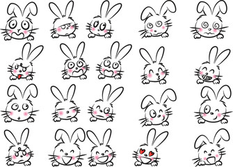 rabbit Expression package