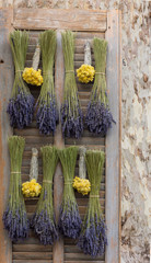 A vintage shutter with distressed wood used to display Dried Lavender and Straw Flowers hanging in bunches.