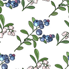 Seamless pattern with floral elements on white. Endless texture with blueberries