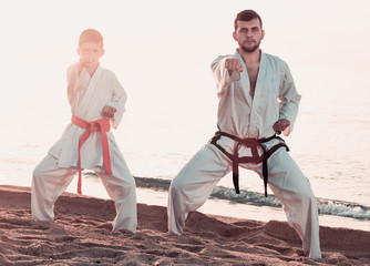 Teacher and boy doing karate poses