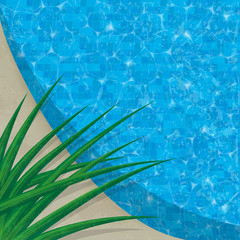 Refreshing swimming pool edge with blue tile. Tropical spiky plant overhanging pool edge.  Ample copy space. Easy-edit layered file.