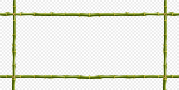 bamboo steam frame isolated on transparent background