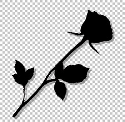 Black silhouette of rose flower isolated on transparent background.