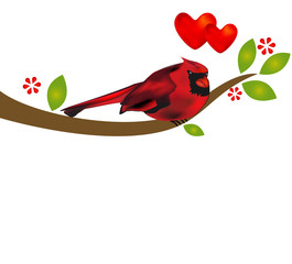 Red bird cardinal on a branch tree template background vector with copyspace