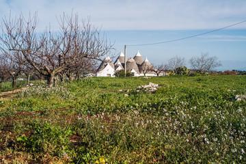 Landscapes of Puglia
