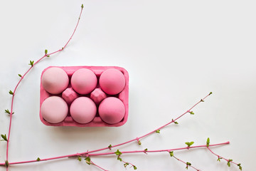 Pink ombre easter eggs on white background with pink colored branches in bloom; easter background with copy space