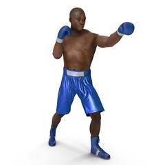 African American Male boxer on white. 3D illustration