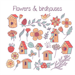 Birds in nests. The flowers and birds. Vector illustration.