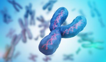 Male gender Y chromosome. Genetics concept. 3D rendered illustration.