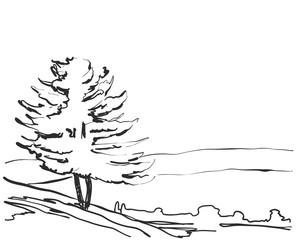 Vector landscape. Sketch a park bench. Tree