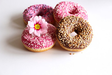 Set of Tasty donuts on white background.Top view.