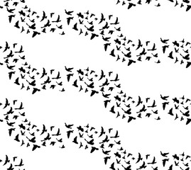seamless background, silhouette pattern flying birds, isolated on white background