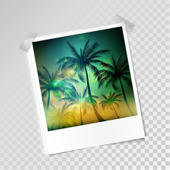photo frame on a transparent background with palm image. Vector illustration.EPS10