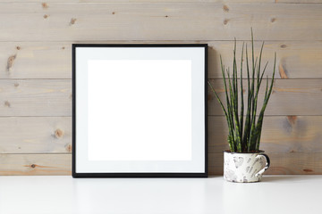 Closeup shot of desk, table or shelf with decorative plant and empty blank foursquare picture frame with white copy space for your photograph or advertising content. Photography, design and decoration