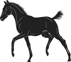 A sketch of a trotting foal.
