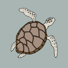 sea animal turtle isolated vector sketch on a blue background