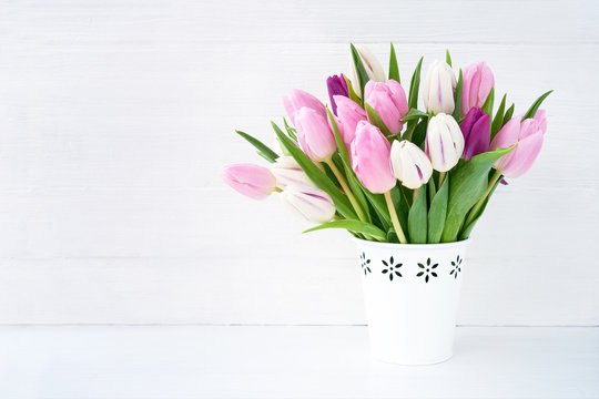White and pink tulips bouquet in white vase on white background. Holiday background, copy space