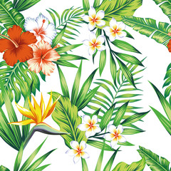 Tropical plants seamless pattern white background