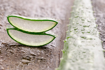 Composition of aloe vera. Concept of beauty cream derived from Aloe, natural medicine and care for the body due to its therapeutic properties, lifting, rejuvenation and Nature