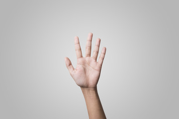 Hands high up on gray background. concept voting.