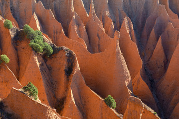 Badlands of Ponton de la Oliva, Madrid Province, Spain