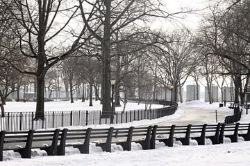 Parque nevado en Manhattan.