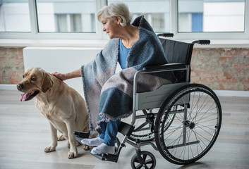 Tranquil old female sitting in invalid chair in room. She is stroking the dog with her hand. The dog is sitting near the chair